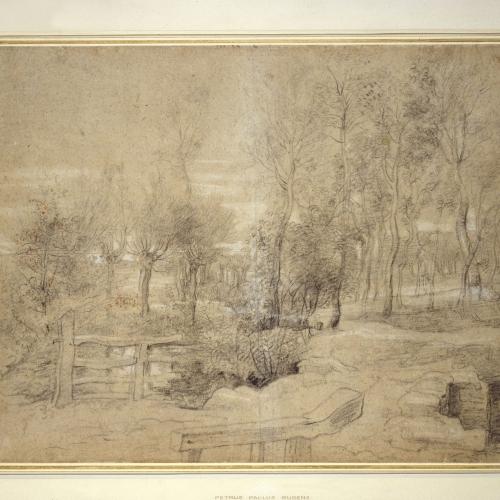 Rubens' landschapstekeningen. Schetsen in de open lucht. Lezing door An Van Camp